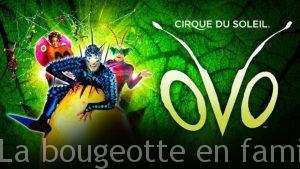 spectacle-ovo-cirque-du-soleil