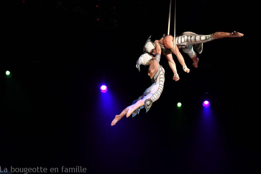 Cirque-du-Soleil-OVO-Aerial-Straps