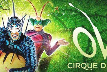 cirque-du-soleil-spectacle-ovo-montpellier