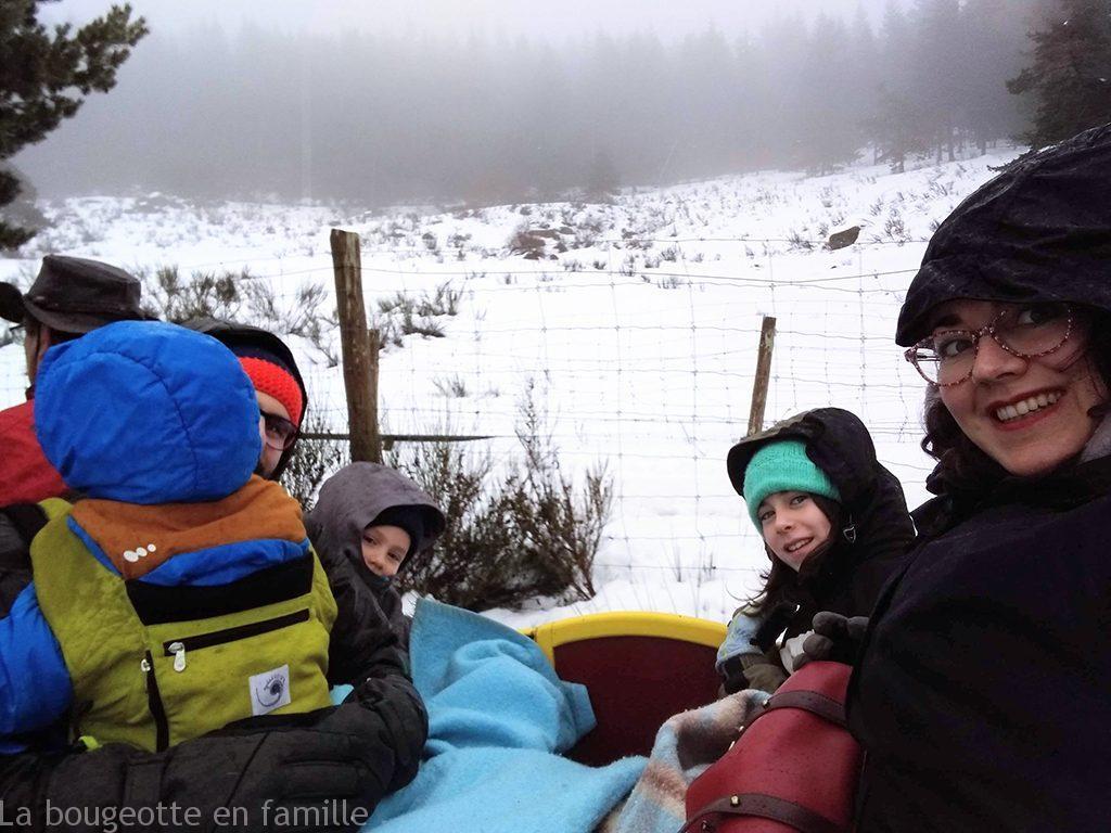 visite-reserve-bison-lozere-enfant