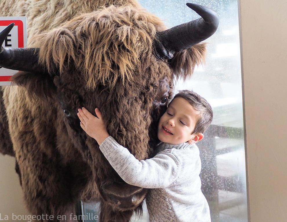 reserve-bison-lozere-enfant