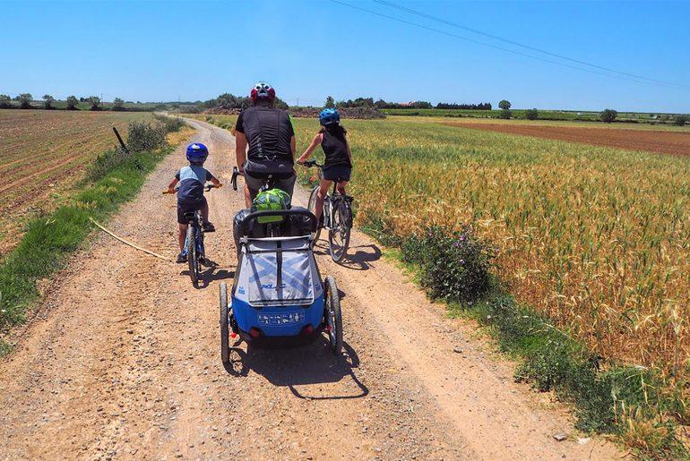 remorque vélo enfant XLC Mono
