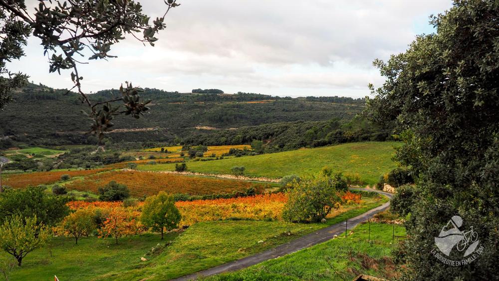 vignes-automne-minervois