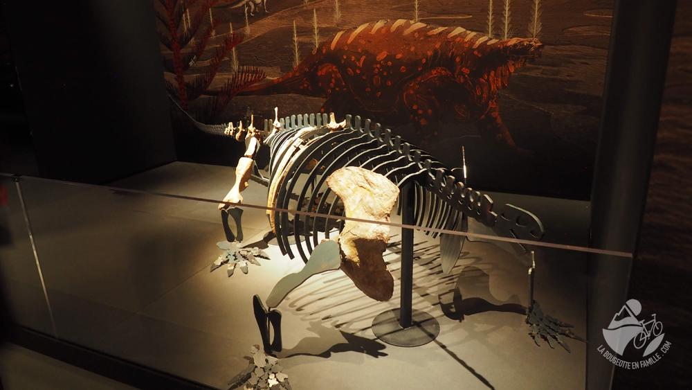 musée de lodeve squelette dinosaure visite