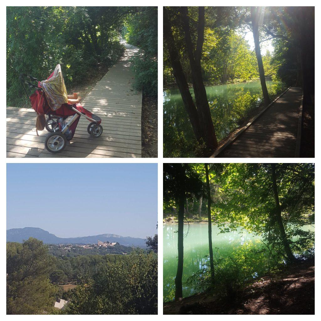 berges du lez, rivière, montpellier, forêt, poussette, balades famille