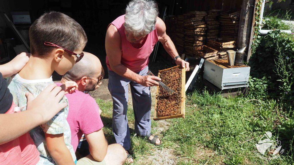 miel, apiculteur, visite, famille